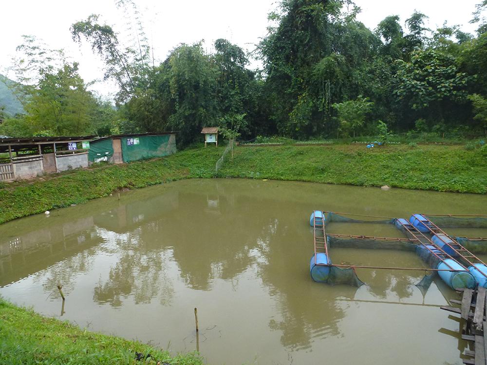 school-garden2